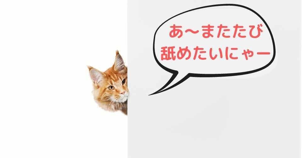 【最新研究と共に解説】猫♡マタタビの謎