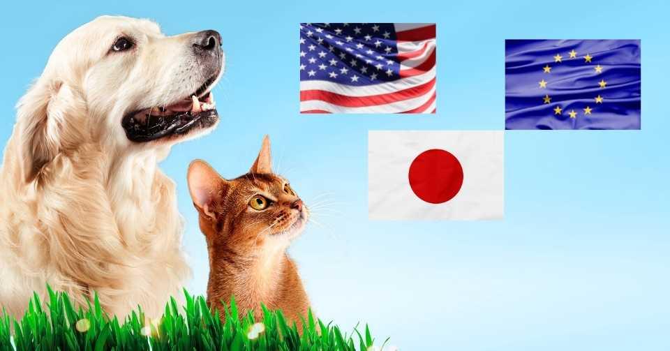 【海外と日本を比較】ペットフード先進国の栄養基準